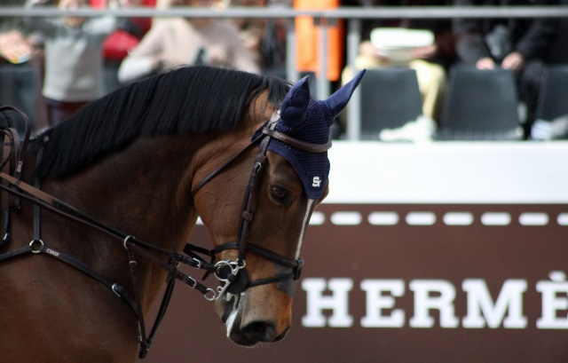Saut Hermès 2018