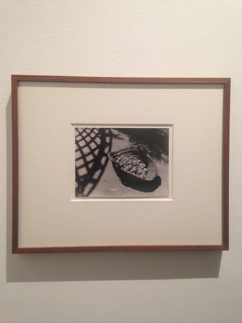Lore kruger une photographe en exil (5)